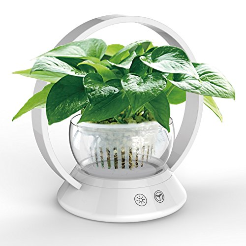 MAIMAI – LED-Pflanzenlampe mit Blumentöpfen, Berührungssensor-Lampe für Zimmerpflanzen, Hydrokultur, Gewächshaus, Garten, Computer-Schreibtisch, Büro-Aufgaben, Beleuchtung, USB-Nachttischlampe