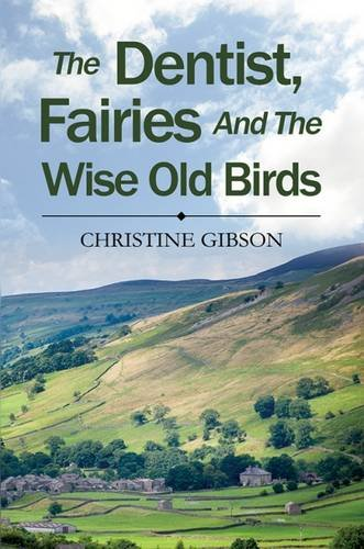 Dentist  the Fairies and the Wise Old Bird by Christine Gibson Hardback Book New