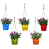 #6: Trust Basket Dotted Round Planter With Hanging Wire Rope