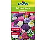 Dehner Blumen-Saatgut, Prinzeß-Aster