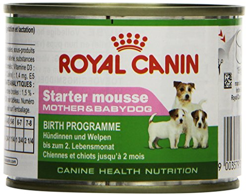 Royal Canin Hundefutter Starter mousse, 195g, 12-er Pack