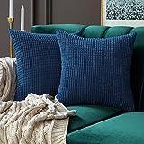MIULEE Housses de Cousssin en Polyester Doux Granulés Carré Taies d'oreiller avec Grands Granules décoratifs Solid pour Canapé Chambre Voiture Salon 60x60cm Bleu Marine 24'x24',2 pièces