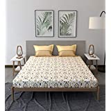 Trident Comfort Living 100% Cotton Double Bedsheet with 2 Pillow Covers, Stephane Brown