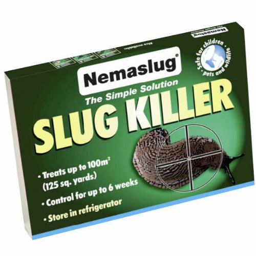 Slug Nematodes 30million (Treats 100sq.m)