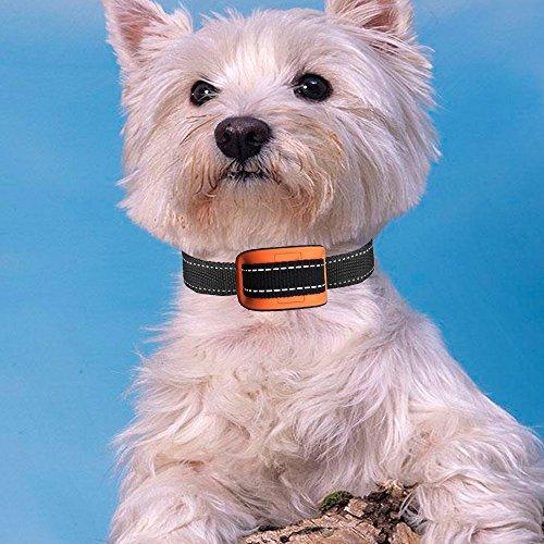 Dog Training Collar No Bark Collar Vibration, Prämie Nylon Halsband und Keine Rostschnalle, 7 Verschiedene Bark Sensitivity Levels Extrem effektiv & keine Schmerzen oder Schmerzen, Bark Collar Vibration, Humane Bark Control Collar Für 20-150 Pfund Hundehalsband (Stil 1) (Extreme Vii)