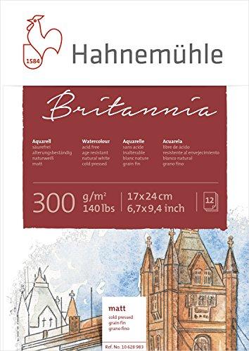 Hahnemühle 10628983 Aquarell-,Calligraphie-,Urkunden- und Postkartenblöcke Aquarellblock 300 g 12...