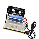 ATWFS Ozone Generator 220v 10g/h with Fan Excellent Heat Dissipation -