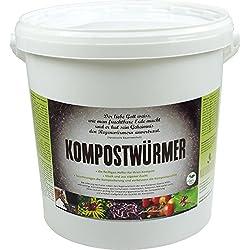 KOMPOSTWÜRMER - Kompost-Starter Regenwürmer - Eisenia Kompostwurm lebend aktiv - Würmer für Garten & Kompostierung Kompost Komposter Wurmkomposter Wurmkiste Wurmfarm Komposttoilette, Anzahl/ Variante:500 Stück in Sack