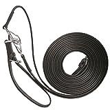 Lederschlaufzügel mit Karabiner und Lederschlaufe | Schlaufzügel Leder 2,10 m schwarz | Schlaufer | Hilfszügel