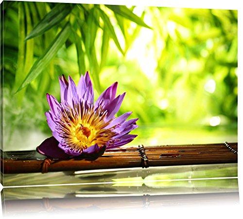 Seerose auf Bambus Wellness Format: 60x40 auf Leinwand, XXL riesige Bilder fertig gerahmt mit Keilrahmen, Kunstdruck auf Wandbild mit Rahmen, günstiger als Gemälde oder Ölbild, kein Poster oder Plakat - Buddha-statue In Japan