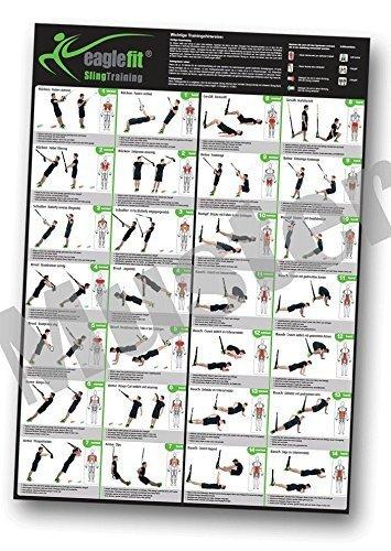 eaglefit ® Sling Trainer Übungsposter mit 28 Übungen A1 Format