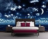 Vliestapete Nachthimmel VT45 Größe:400x280cm, Fototapete, Vlies Tapete, High Quality, PREMIUM Bildtapete, Tapete Nacht Firmament Sterne