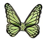 halloweenia–Enfants Costume à ailes de fées Elfes de papillons, 78x 82cm, vert