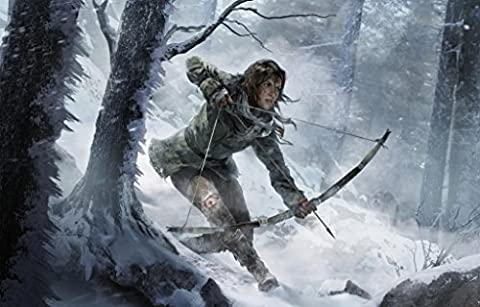 RISE OF THE TOMB RAIDER - Imported Video Game Wall