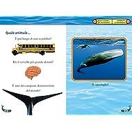 Balene-Livello-4-Ediz-illustrata