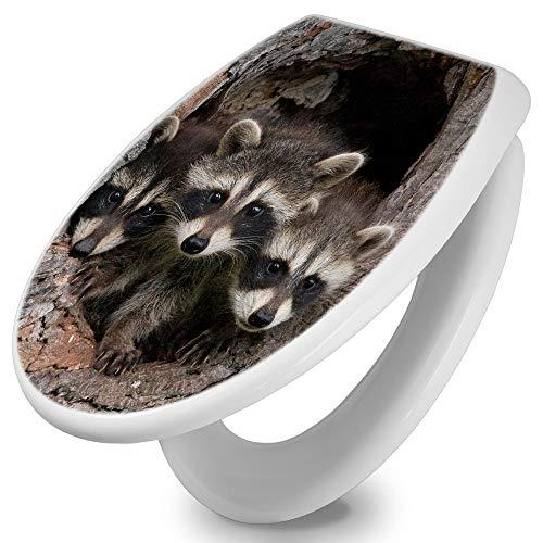 banjado Toilettendeckel mit Absenkautomatik | WC Sitz 42cm x 4cm x 37cm | Klodeckel weiß | Klobrille mit Edelstahl Scharnieren | Toilettensitz mit Motiv Drei Waschbären