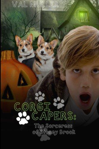 Corgi Capers: The Sorceress of Stoney Brook