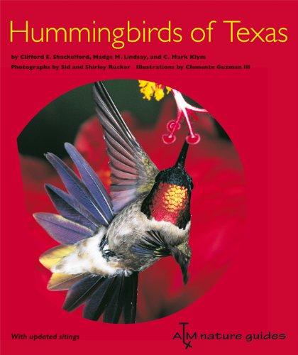 Hummingbirds of Texas (Atm Nature Guides) Texas A&m University Atm