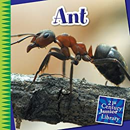 Susan H. Gray - Ant (21st Century Junior Library: Creepy Crawly Critters)