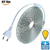 Techbox® Komplettset Band LED 220 V Silikon Wasserdicht IP68 kaltweiß oder warmweiß, weiß, KIT-STRIP-220V-BC