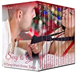 Sexy to Go Volume 12 (10 Sexy-Short Erotic Tales)