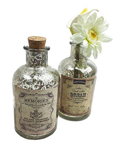 """2er Set Glasflasche Antik """"Dream & Memories"""" H:13 cm – als Vasen Set, Tischdeko etc."""
