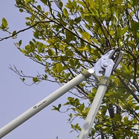 Bheema Pena manico lungo albero da frutto Lopper Garden alta Pruner Branch Shears