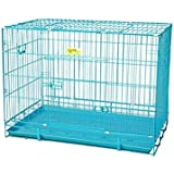 JAINSONS PET PRODUCTS Metal Dog Cage (Blue, 24 Inch)