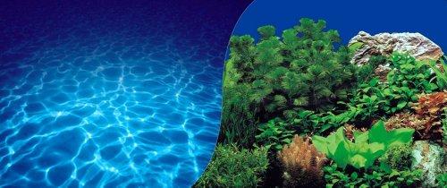 Fotorückwand 200x50 zweiseitig Rückwandfolie 200 50 Pflanzen Unterwasser 18420