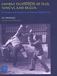 Combat Techniques Taiji Xingyi: Principles and Practices of Internal Martial Arts