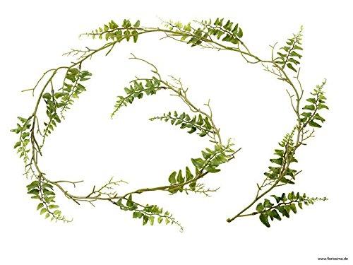 Künstliche Farn Girlande - Länge: 180cm - Naturgetreu & Premium Verarbeitung - Kunstpflanze/Dekogirlande/Dekopflanze/Kunstfarn/Tischdekoration/Dekoration (Farn-girlande)