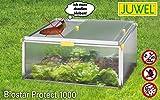 JUWEL BIOSTAR Frühbeet Bio Star Protect 1000 (reiche Ernten, ideales Mikrokilma, geschützt, Maße: 100 x 75 x 50 cm) transparent