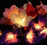 Lotus LED Lichterkette 20 Stk. - bunt / Blüten Lichterketten