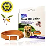 X-cool Collar antiparasitario para Perros Gatos, Natural Botanical impermeable Collar de Pulgas y