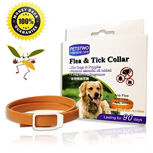 X-Cool Zeckenhalsband Flohhalsband Hunde Katze, natürlichen ätherischen Ölen Wasserdichte, Wirksamen Schutz Gegen Flöhen Moskitos - Einheitsgröße 50cm (50cm)
