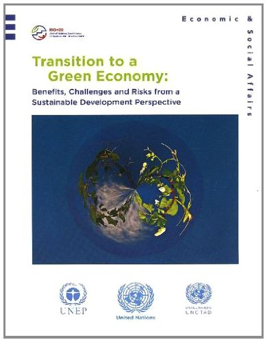 Preisvergleich Produktbild Transition to a Green Economy: Benefits, Challenges and Risks from a Sustainable Development Perspective