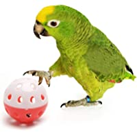 The Pets Company Bird Interactive Bell Ball, Bird Toy for Parakeet, Cockatiel, Budgerigar, Parrots, 1.5 Inches, Medium…