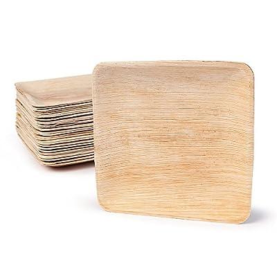 BIOZOYG DTW05359 Assiette jetable en feuille de palmier, 25 pièces, carrée, 20x20 cm, compostable