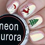 Ushion Neon Nail Powder Chrom Puder Aurora Effekt luminaura Kristall Opal Pearl AB Einhorn Nägel Spiegel Puder