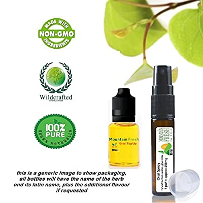 Organic Cayenne Pepper Capsicum Annuum Organic Oral Atomiser Spray 10ml Mint With Spare 10ml Mint Refill from Mountain Fresh
