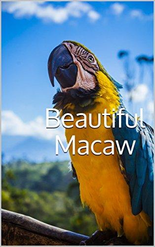 Beautiful Macaw: Photobook of variety macaws around the world (photobook birds 1) (English Edition)