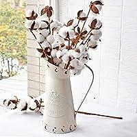 HyFanStr Rustic Style Metal Pitcher Decorative Flower Vase Primitive Jug Cream