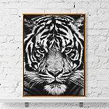 Geiqianjiumai Affiche Nordique de Toile d'impression de Requin-Tigre Animal et Toile d'impression Murale Salon sans Cadre 50cmX70cm