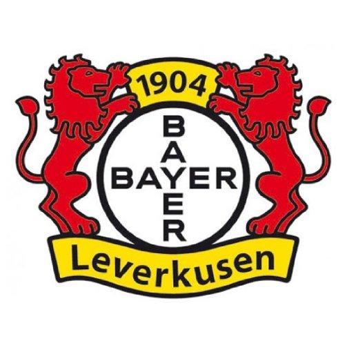 fan-aufkleber-bayer-04-leverkusen-6-cm
