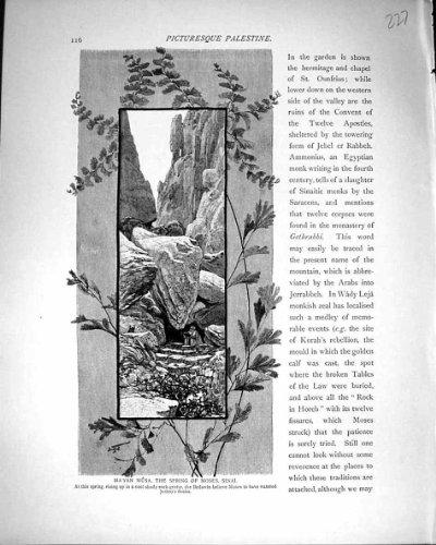 Frühling 1881 Palästinas Ma'Yan Musa Moses Sinai Bedawin