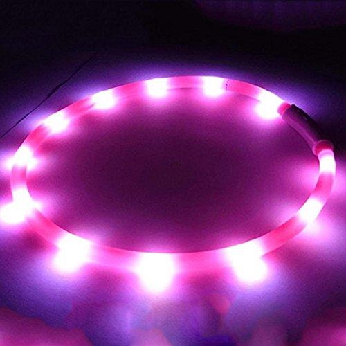 USB aufladbare LED Blinklicht Band Glow Sicherheitsgurt Pet Dog Puppy Halsband (Gürtel Button, Schleife)