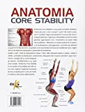 Image de Anatomia Core Stability. Guida completa per migliorare il controllo motorio nello sport e nella vita quotidiana e prevenire gli infortuni