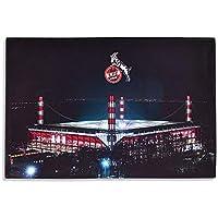 Football Poster Plakat Drucken Bild Liverpool FC 43.2 x 60.7cm Gr/ö/ße Gr/össe LFC Mo Salah