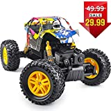 DOUBLE E RC Cars 1:18 Dual Motors Rechargeable Remote Control Truck 4WD Off