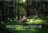 WUNDER DER NATUR - wenn neues Leben entsteht (Wandkalender 2018 DIN A4 quer): Faszination Schwangerschaft im Einklang mit der Natur. (Monatskalender, ... [Apr 04, 2017] Allgaier (ullision), Ulrich